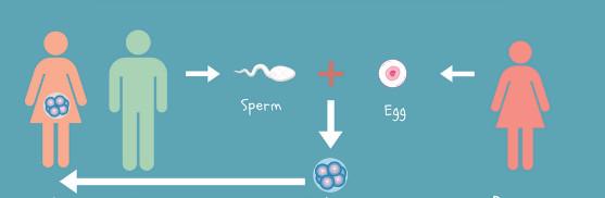 donacion de ovulos toluca